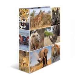 Poradač pákový A4/7 cm Zvieratá Afrika