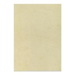 Predtlačený papier, A4, 200 g, APLI, havana